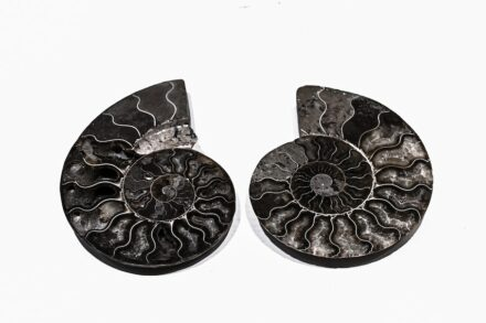 """""""Artifacts in Stones"""". Designer: YING LIANG WU HAO YOU PIN."""